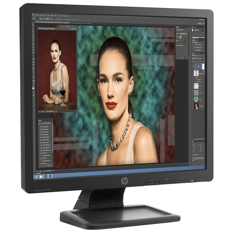 "HP ProDisplay P19A 19"" SXGA TN Monitor - Desktop Overview 2"
