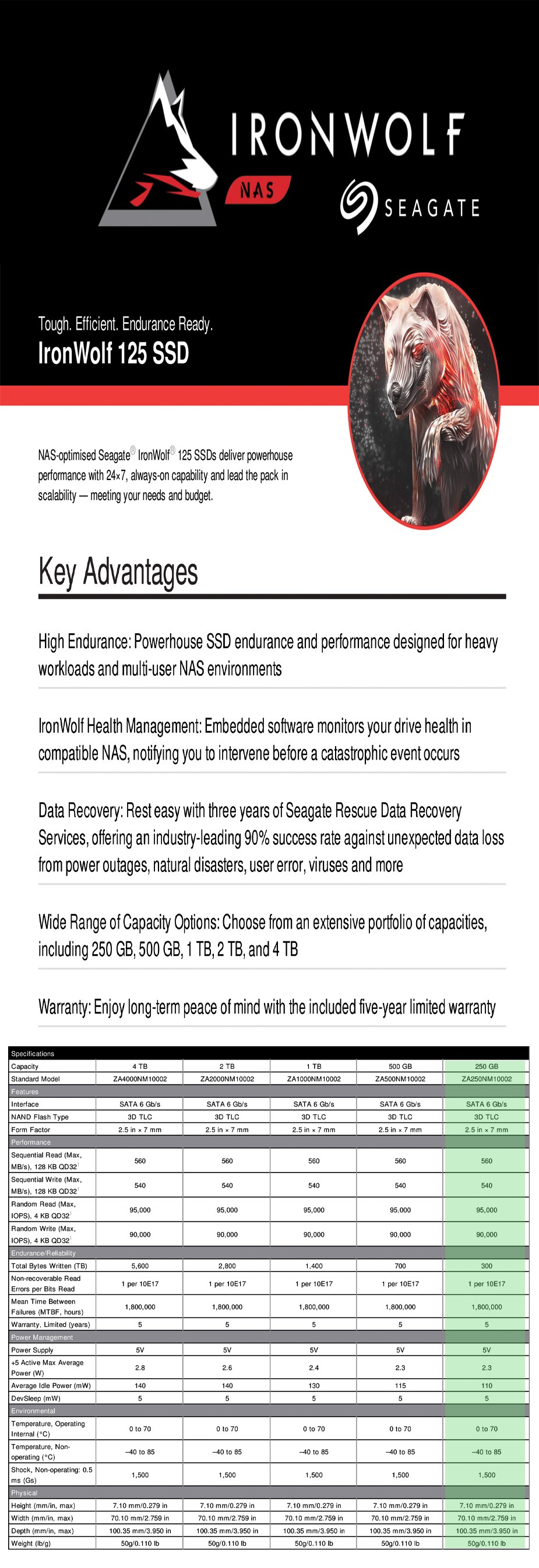 "Seagate IronWolf 125 250GB 2.5"" SATA NAS SSD ZA250NM1A002 - Overview 1"