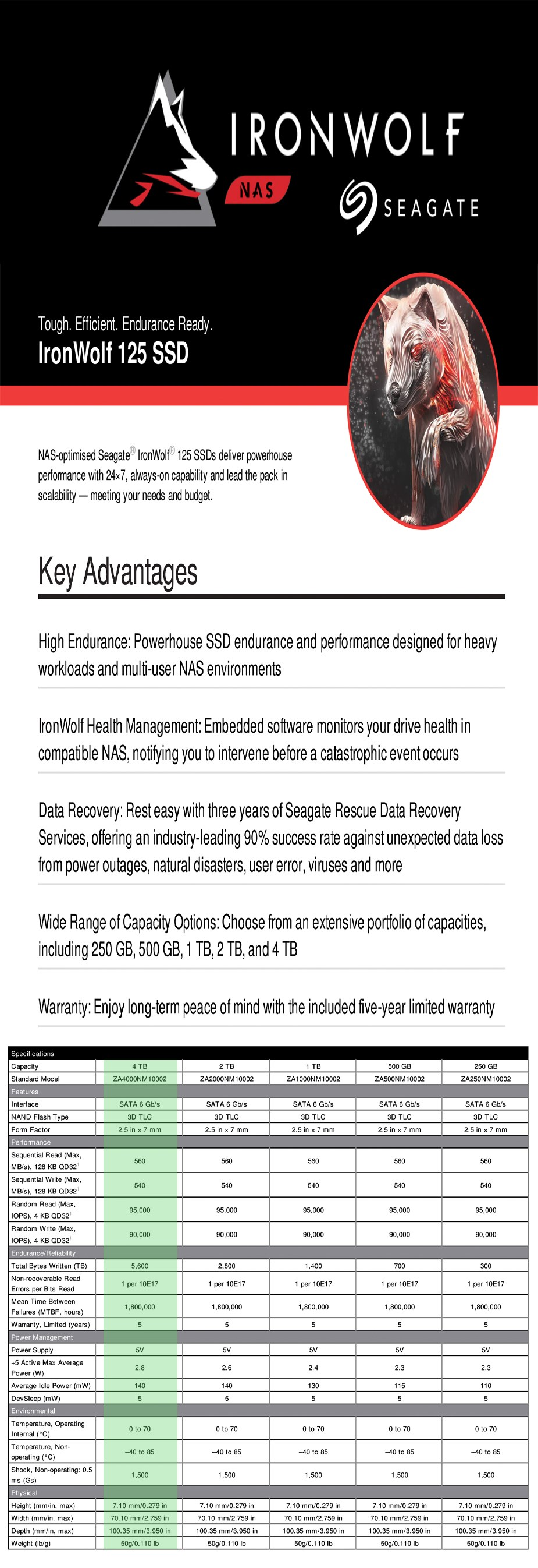 "Seagate IronWolf 125 4TB 2.5"" SATA NAS SSD ZA4000NM1A002 - Overview 1"