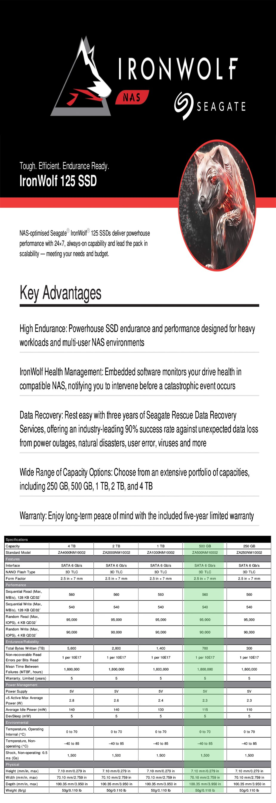 "Seagate IronWolf 125 500GB 2.5"" SATA NAS SSD ZA500NM1A002 - Overview 1"